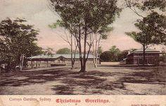 Postcard of Correy's
