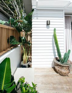 Guest house design: Inside Kyal and Kara's backyard studio Outdoor shower at Kyal and Kara's guesthouse Beautiful Ceiling Designs, Kyal And Kara, Open Plan Kitchen Living Room, Diy Blinds, Backyard Studio, Beach Bungalows, Australian Homes, Modern Exterior, Exterior Design