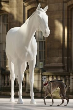 Greyhound stands by Mark Wallinger horse. Australian Tattoo, Moore Park, Tattoo Expo, Expo 2020, World Tattoo, Horses And Dogs, Weird Pictures, Equine Art, Whippet