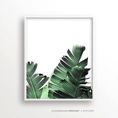 Digital Download Art// Banana palm leaf (this print also come in a black & white version)  Welcome to SCANDINAVIAN PRINT ART!  ★ Buy 2 - get 4 PRINTS! - Select 4 prints in your cart and use code FOUR4TWO at checkout to get 2 of them free! ★  Print out the art on your printer at home, or use a local or online printshop, and decorate your walls in the minimalistic style Scandinavia is known for. It is a unique, beautiful, easy, quick and budget friendly way of decorating your walls.  YOU WILL…