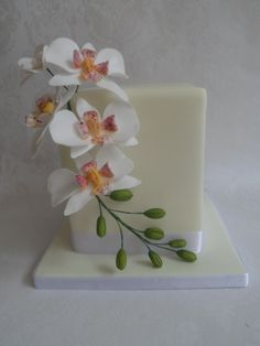 Double tier stacked celebration cake with handmade sugar moth orchids. Made by Carpel's Creative Cakes, sugar flower artist