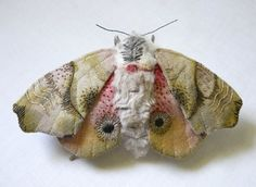 Fabric sculpture Eyed-Hawk-Moth textile art by YumiOkita on Etsy * Fabric Butterfly, Butterfly Crafts, Textile Fiber Art, Textile Artists, Fabric Art, Fabric Crafts, Cotton Fabric, Hawk Moth, Creative Textiles