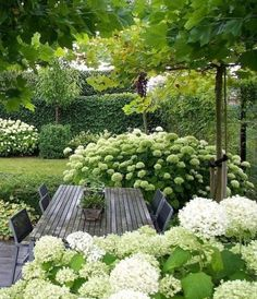 Garden design isn't only about earning your garden more attractive, but is also . Garden design isn't only about earning your garden more attractive, but is also essential in making it more functional. A little garden design differs. White Gardens, Small Gardens, Outdoor Gardens, Amazing Gardens, Beautiful Gardens, Design Jardin, Garden Cottage, Small Garden Design, Front Yard Landscaping