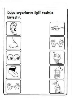 Five Senses Worksheets for Kindergarten. 24 Five Senses Worksheets for Kindergarten. Kindergarten Worksheets Kindergarten Worksheets the 5 Five Senses Kindergarten, Five Senses Preschool, 5 Senses Activities, My Five Senses, Free Kindergarten Worksheets, Preschool Learning Activities, Preschool Printables, Worksheets For Kids, Preschool Activity Sheets