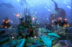 Evening of Exploration for National Geographic decor, large scale projection, under the sea