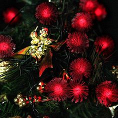 LOHOME LED Solar Powered String Lights  50LED 23ft Chuzzle Ball Shape Christmas Trees Decorative Lighting  Holiday  Party Decoration Lamps for Indoor  Outdoor Red * Check out this great product.  This link participates in Amazon Service LLC Associates Program, a program designed to let participant earn advertising fees by advertising and linking to Amazon.com.