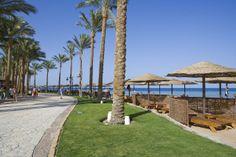 Makadi Bay #egypt #travel