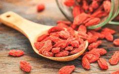 Os 6 Benefícios do Goji berry Para Saúde