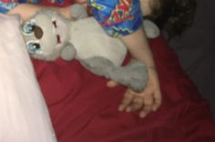 Lost on 08 Jul. 2016 @ Melbourne, victoria. Lost grey smiley bunny rabbit on Train. Possibly on Caulfield line. Much loved. Visit: https://whiteboomerang.com/lostteddy/msg/i7dk5z (Posted by Suzanna on 11 Jul. 2016)