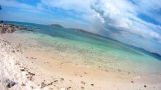 2013 sany^shores