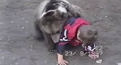 蘇聯兒童与小熊玩角力。A Russian Child Wrestles A Bear While 50 Cent's 'Candy Shop' Plays In The Background - Digg