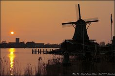 Windmills at Sunset