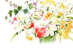 Ayako Tsuge     WAter color artist
