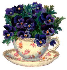 Teacup with pansies