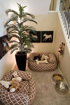 Dog's room?!? You bet!!!