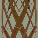 Meadow Grass -Copper, wallpaper van Little owl
