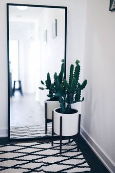 modern white planter with cactus, geometric rug