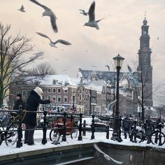 Amsterdam - www.amsterdamcomlimao.com    Blog in portuguese  about amsterdam