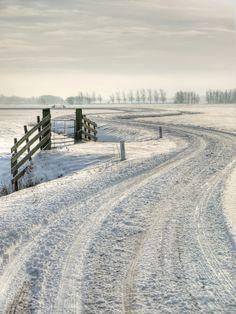 Dutch polder scene after heavy snowfall, Netherlands