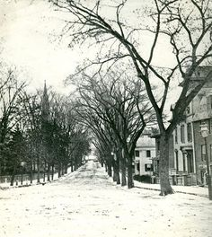   Upper State Street   New London County Historical Society The beautiful Elms New London was once noted for