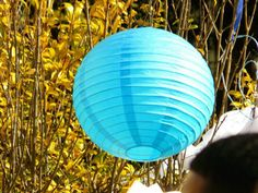 Chinese lanterns always make for a nice party decoration, whether its day or night!