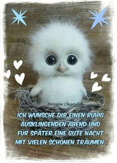 Pin by Imke Dierks on Sprüche Good Night Cat, Good Night Wishes, German Quotes, Romantic Pictures, Nighty Night, Facebook Humor, Woodland Party, Animals Of The World, Emoticon