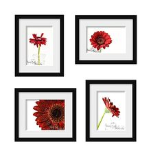 Red Gerber Daisy Home Decor Flower Pictures by CrystalGaylePhoto, $64.00