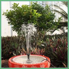 Ankway Solar Fountain Water Pump Wire Length Solar Water Pump for Ponds Bird Bath Solar Powered Fountains Kit for Garden & Pool Submersible Fountain Pump Water Fountain Pumps, Bird Bath Fountain, Bird Bath Garden, Garden Pond, Water Fountains, Solar Powered Water Pump, Small Ponds, Diy Solar, Fountain Ideas