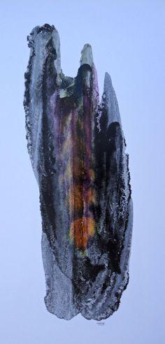FRACTAL # 12 Oil dispersion / paper 95 x 55 cm