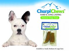 Himalayan ChurpiChews dog Treats (long lasting and great tasting) on sale w/ free shipping @Coupaw