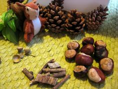 This is one of the kids' favorites so far! Squirrel sensory tub by www.nurturestore.co.uk, via Flickr