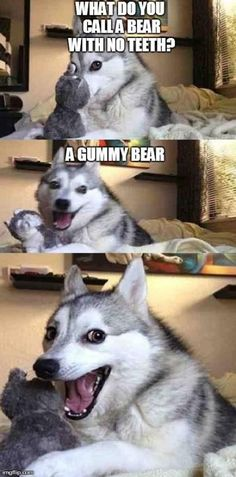 I wish my dog would tell me jokes like this....