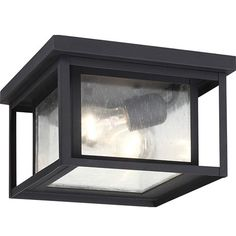 Hunnington Black Two Light Outdoor Flush Mount With Clear Seeded Glass Seagull Flush Mount