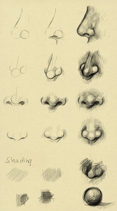 Nose reference by ryky.deviantart.com on @deviantART