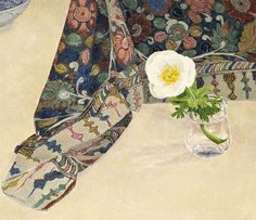 Cressida Campbell .Ranunculus with painted cloth