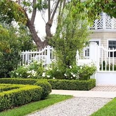 Project Pretty Please. Timeless, classic and chic. My clients let me have my way with lots of Boxwood hedges, Boxwood globes and gravel pathways. This beautiful home was built by Empire Design Fine Construction. #homedesign#build#design#boxwoodlove#teryldesigns#gardenista