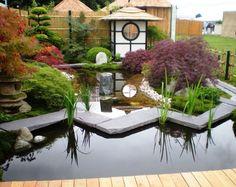 jardin japonais moderne aménagé avec un étang de jardin embelli par des galets, des plates aquatiques et entouré d'érables japonais