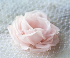 Hey, I found this really awesome Etsy listing at https://www.etsy.com/listing/168016406/veilsbridal-veil-bridal-birdcage-veil