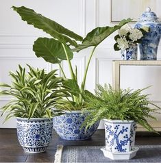 Our Ming-style porcelain planter is hand painted in traditional blue and white, with a chrysanthemum pattern that recreates the beauty of the centuries-old Chinese originals. Perfect for displaying flowering plants or herbs. Small Potted Plants, White Plants, White Ceramic Planter, Blue And White Vase, Blue And White Style, White Bedroom Furniture, Blue Pottery, Blue China, Ginger Jars