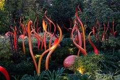 The beautiful Chihuly Glass and Garden in Seattle. photogardenerblog.com