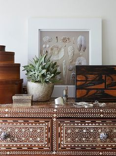 A tigerwood box, potted succulent and framed seashell print add major bohemian flair to this bone inlay Indian dresser.