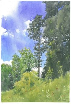 Michal Suffczyński - realistic watercolor painting of trees - spring landscape - cm Watercolor Flower, Watercolor Trees, Watercolor Landscape, Landscape Paintings, Watercolor Paintings, Watercolours, Gouache, Forest Drawing, Watercolor Architecture