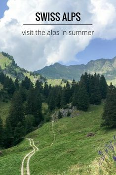 Alps region   Switzerland. Read this article for things to do in the Swiss Alps in summer. Stay in the mountains and enjoy spectacular views, walking trails, local produce and more
