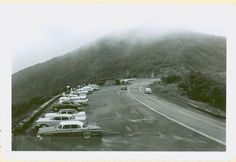Craggy Gardens, on the Blue Ridge Parkway. 1961