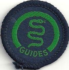 Vintage-Guide-Interest-Badge-Health
