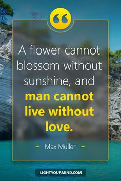 A flower cannot blossom without sunshine, and man cannot live without love. - Max Muller Life quotes | Good Quotes | Best Quotes | Inspirational quotes | Inspiring quotes | Success Quotes | love Quotes