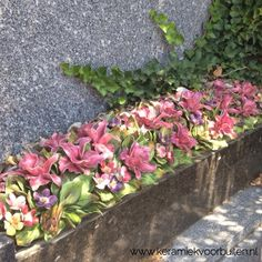 Voorbeeld van de Famous French Ceramic Flowers op een tombe in Zuid Frankrijk Ceramic Flowers, Clay Flowers, Cemetery Flowers, Famous French, Ceramic Pottery, Porcelain, Shapes, Plants, Handmade