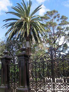 #Melbourne in spring #Australia #Victoria