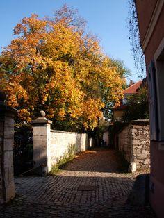 Weimarer Herbst von Manimusifo15