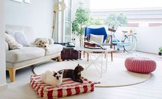 These Chic Pet Bed Stylings Will Give YouPaws(e)